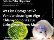 Hegemann - Helmholtz Vorlesung Juli 2016